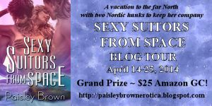 SSfS blog tour button