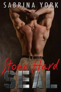 stone-hard-seal-e-reader-copy